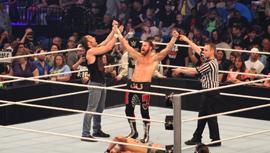 WWE48_topsitecover.jpg